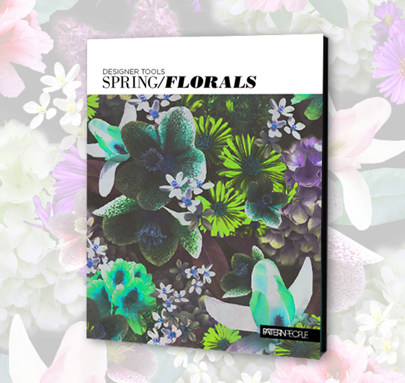 DT spring florals blog Designer Tools | Spring Florals Photo Pack