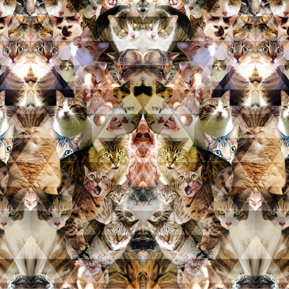 Cat Pattern Wallpaper Cat thumb1 device wallpapers