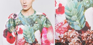 Prints | Botanical Layers