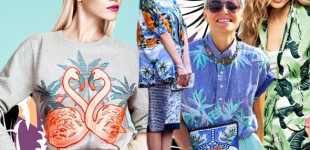 Pattern Report | Tropicalia