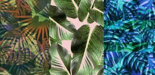 Studio Peek | Pattern People