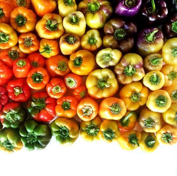 wrightkitchen10 590x587 Edible Art | Food Gradients