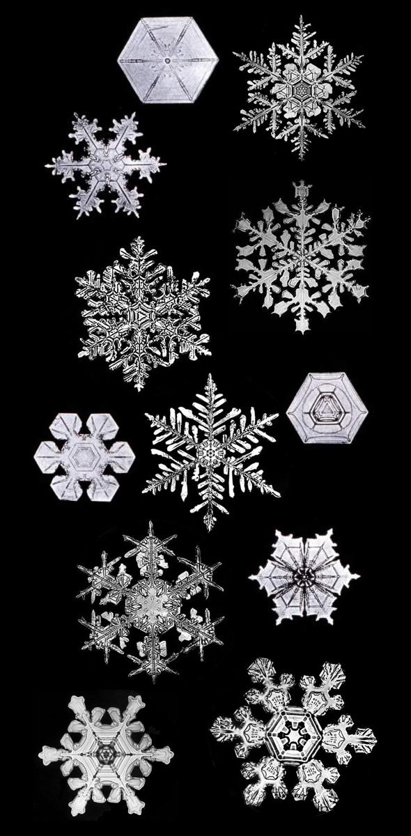 snowflakes_bentley