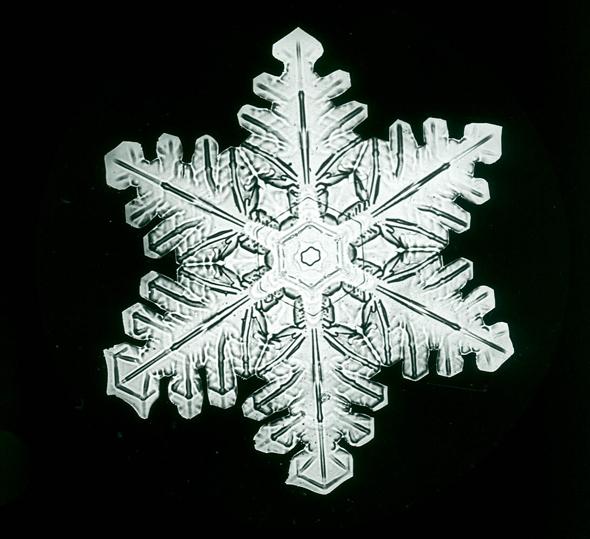 snowflakes_bentley2