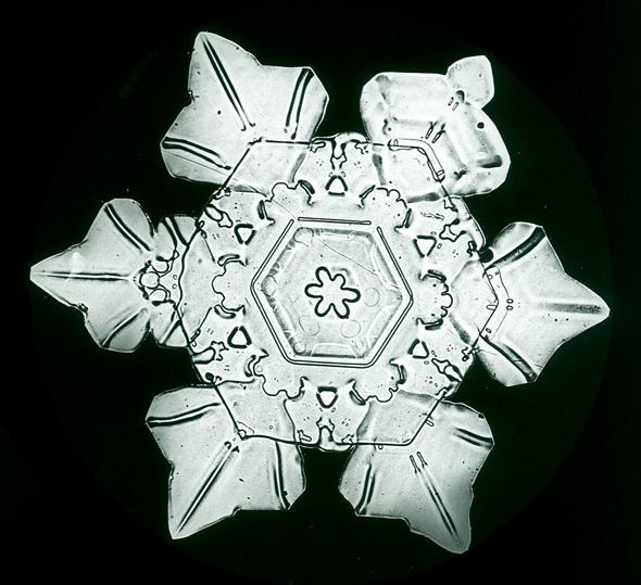 snowflakes_bentley3