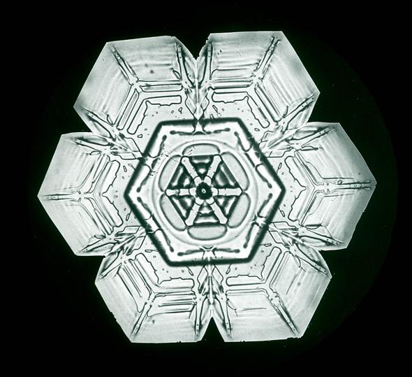 snowflakes_bentley4