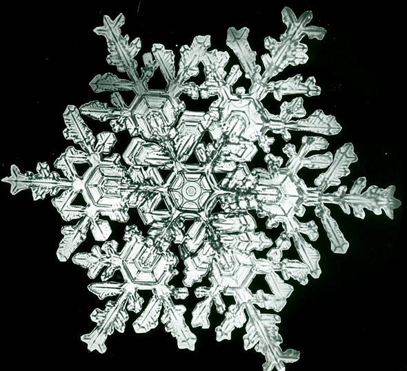 snowflakes_bentley5