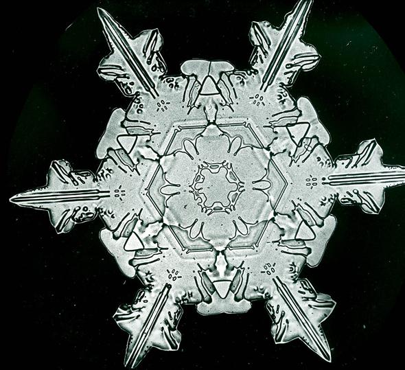 snowflakes_bentley6