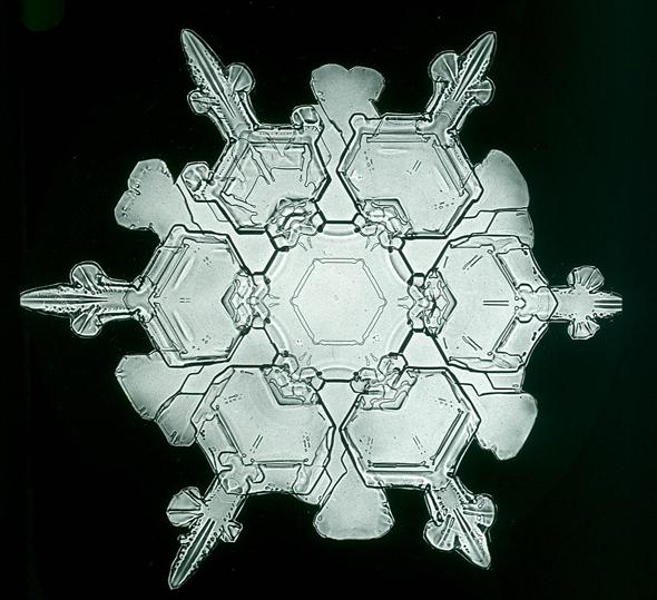 snowflakes_bentley7